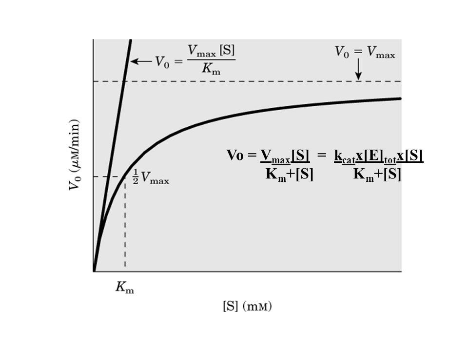 Vo = Vmax[S] = kcatx[E]totx[S]